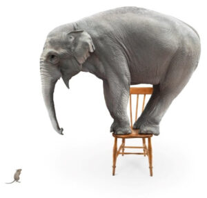 Elephant and Mouse from iStock2